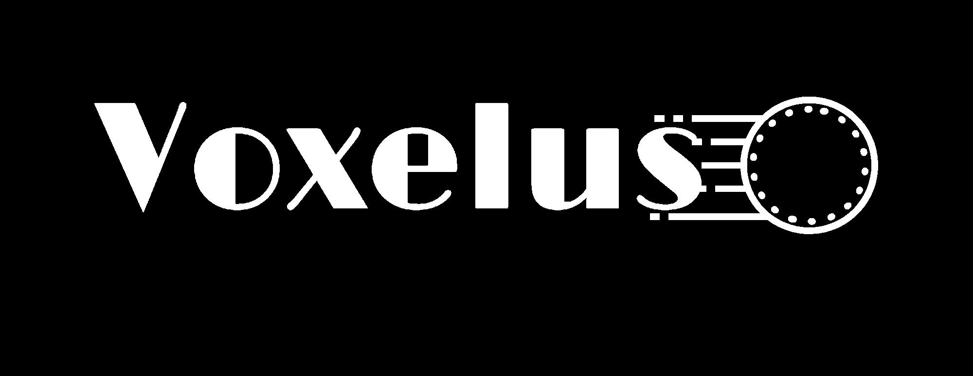 Voxelus-logo-white (1)